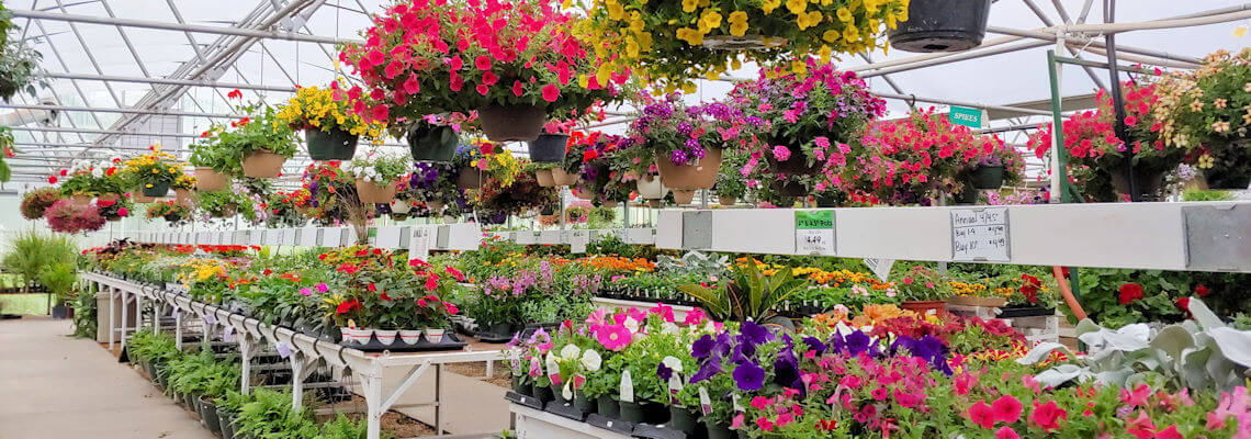TLC Garden Center - Greenhouse